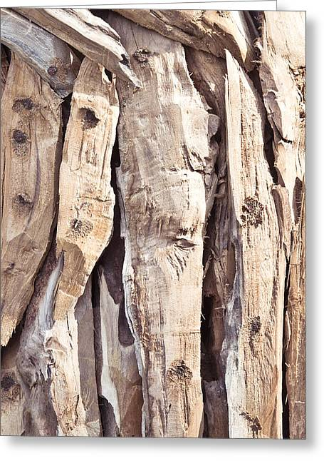 Dead Tree Trunk Greeting Cards - Wood abstract Greeting Card by Tom Gowanlock