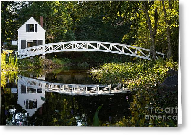 Maine Islands Greeting Cards - Wood bridge Somesville Greeting Card by Jane Rix