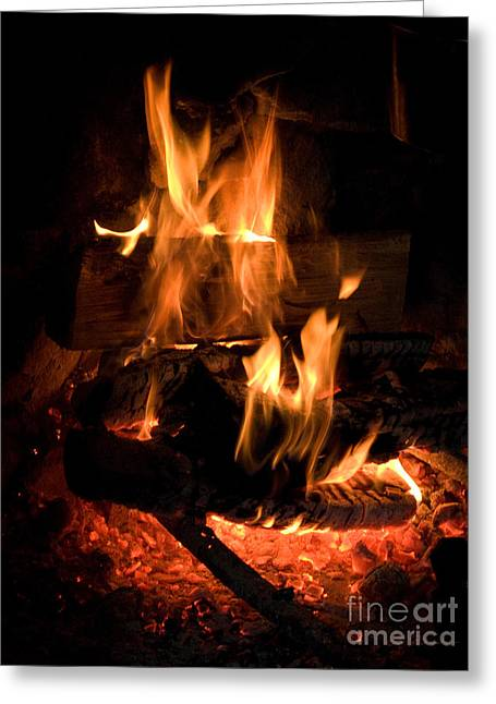 Wood In Open Fireplace Greeting Card by Iris Richardson