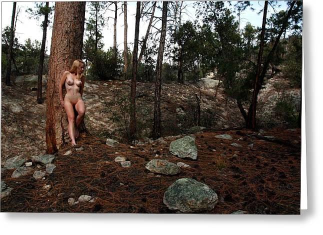Disrobed Greeting Cards - Wood Nymph Greeting Card by Joe Kozlowski