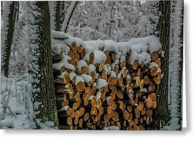 Saw Greeting Cards - Wood Pile Greeting Card by Paul Freidlund