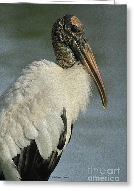 Bird Rookery Swamp Greeting Cards - Wood Stork in Oil Greeting Card by Deborah Benoit
