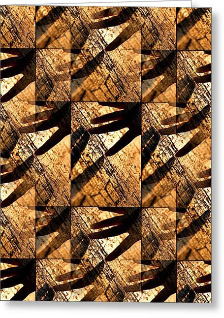 Amazing Sunset Greeting Cards - Wood Touching Greeting Card by Valentino Visentini