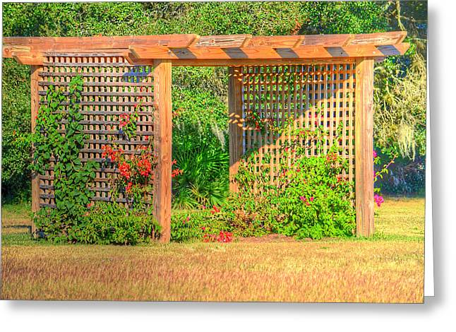 Trellis Greeting Cards - Wood Trellis Greeting Card by Ronald T Williams