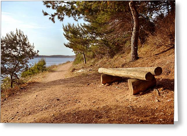 Seated Pyrography Greeting Cards - Wooden bench in national park Premantura Greeting Card by Oliver Sved