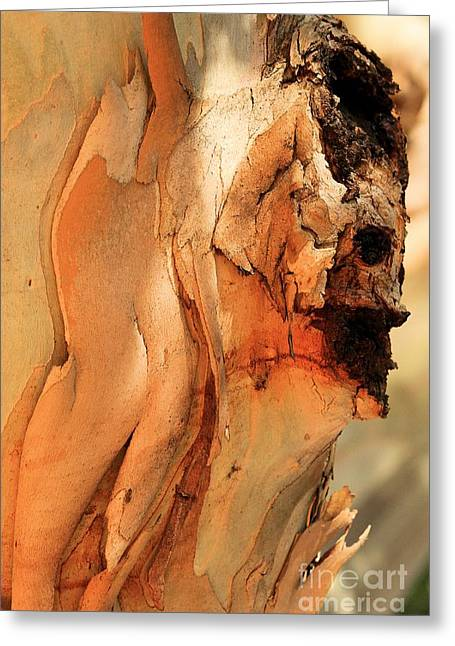 Santa Cruz Art Greeting Cards - Wooden Face Greeting Card by Adam Jewell