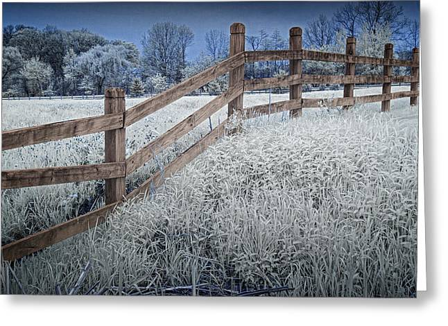 Horse In Pasture Infrared Landscape Greeting Cards - Wooden Fence of a Friesian Horse Pasture on Windmill Island Greeting Card by Randall Nyhof