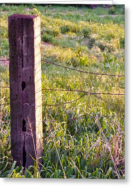 Wooden Fencepost Greeting Card by Tracy Salava