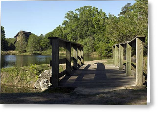The Nature Center Greeting Cards - Wooden Footbridge Greeting Card by William Ragan
