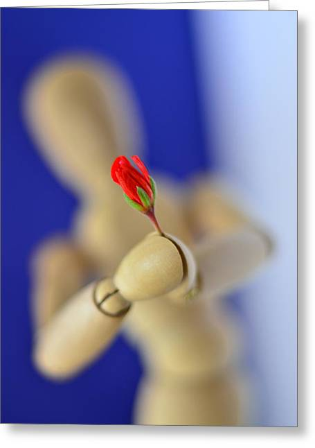Wooden Man With A Flower Greeting Card by Gynt