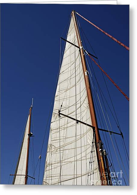 Cape Town Greeting Cards - Wooden masts and sails Greeting Card by Sami Sarkis