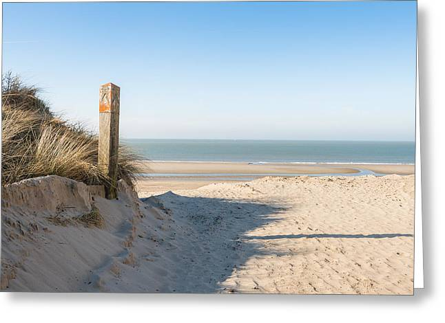 Dutch Greeting Cards - Wooden pole in a dune at the beach Greeting Card by Ruud Morijn