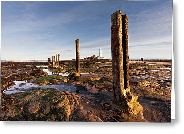 Wooden Posts At The Water S Edge Greeting Card by John Short