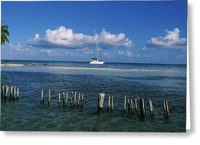 Cay Greeting Cards - Wooden Posts In The Sea With A Boat Greeting Card by Panoramic Images