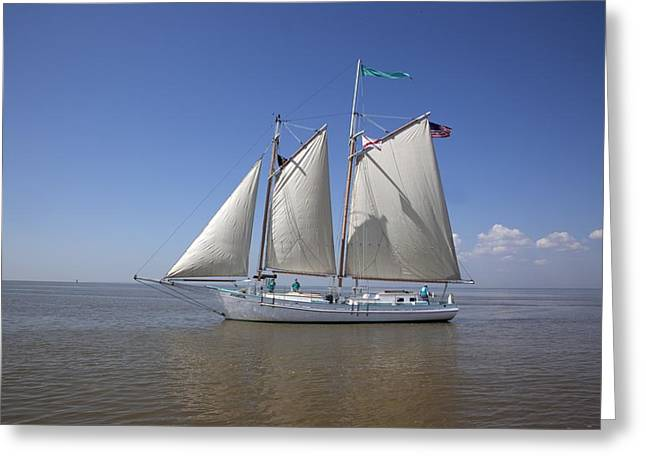 Highsmith Greeting Cards - Wooden Schooner Joshua Greeting Card by Carol Highsmith