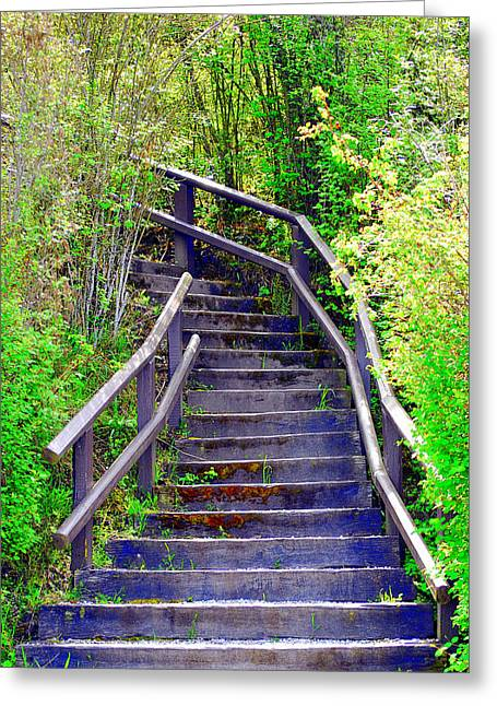 Wooden Stairs Greeting Cards - Wooden stairs. Greeting Card by Oscar Williams