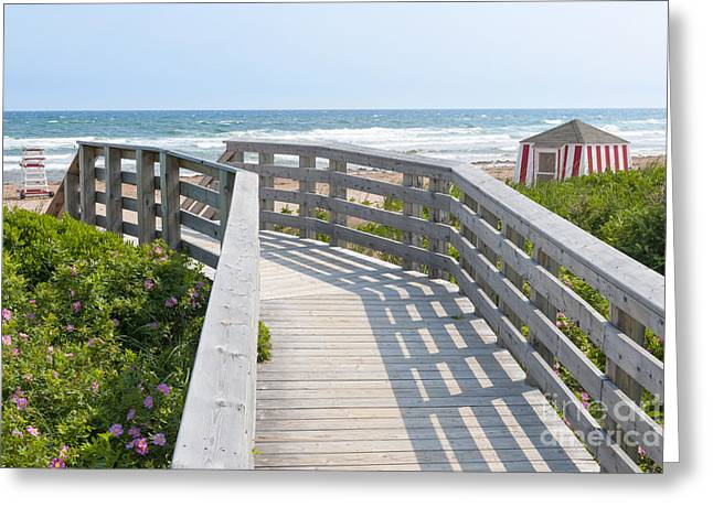 Rose Tower Greeting Cards - Wooden walkway to ocean beach Greeting Card by Elena Elisseeva