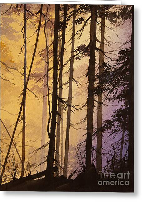 Landscape Framed Prints Greeting Cards - Woodland Dawn Greeting Card by James Williamson