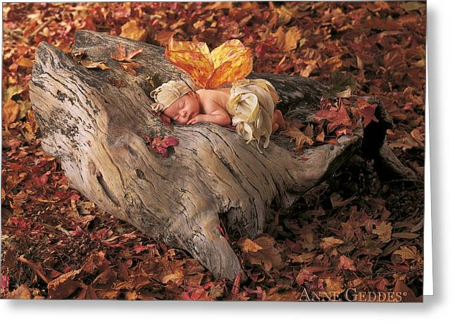 Babies Greeting Cards - Woodland Fairy Greeting Card by Anne Geddes