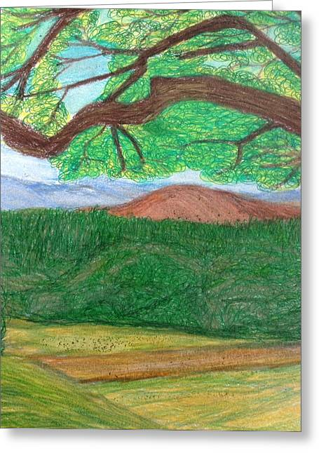 Serrania Greeting Cards - Woodland Hilltop  Greeting Card by Christine Degyansky