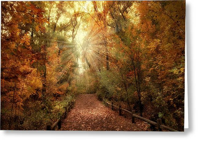 Trail Digital Greeting Cards - Woodland Light Greeting Card by Jessica Jenney