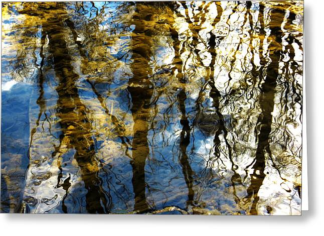 Trees Reflecting In Creek Greeting Cards - Woodland Reflections Greeting Card by Shawna  Rowe
