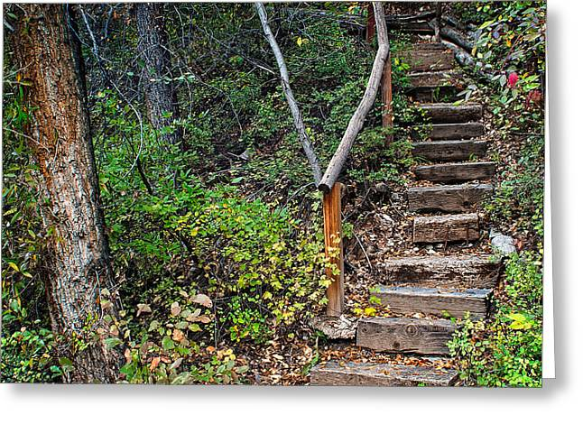 Flight Of Stairs Greeting Cards - Woodland Stairs in Aspen Colorado Greeting Card by Julie Magers Soulen