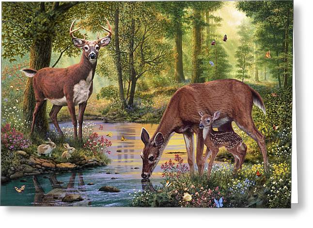 Harmonious Greeting Cards - Woodland Stream Greeting Card by Steve Read