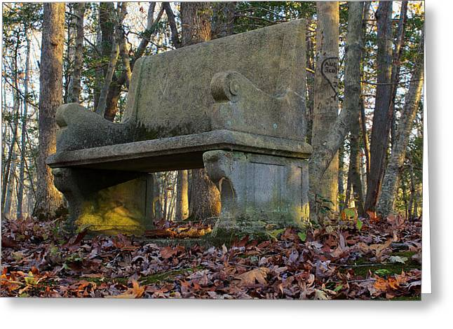 Stone Bench Greeting Cards - Woodland Throne Greeting Card by Andrew Pacheco