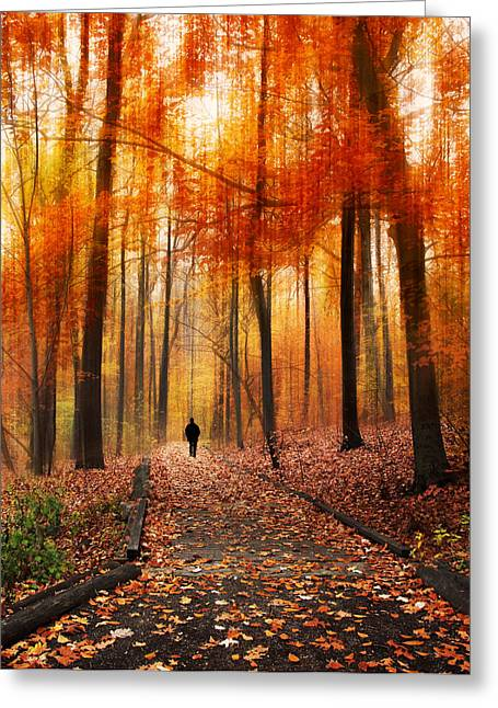 Blurred Motion Greeting Cards - Woodland Walk Greeting Card by Jessica Jenney