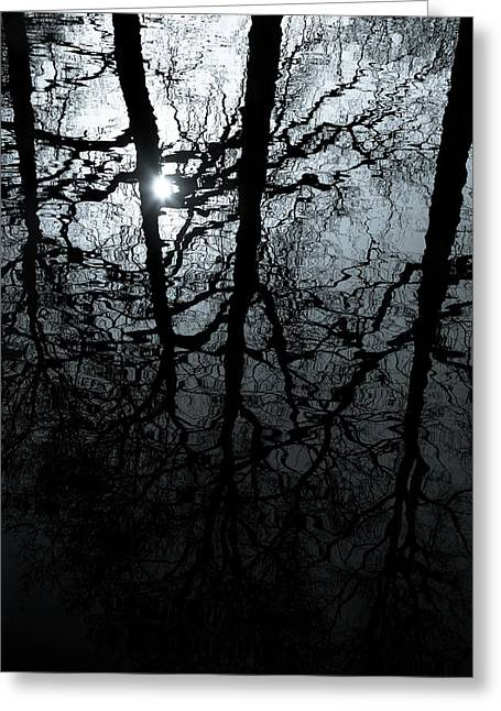 Calm Waters Greeting Cards - Woodland Waters Greeting Card by Dave Bowman