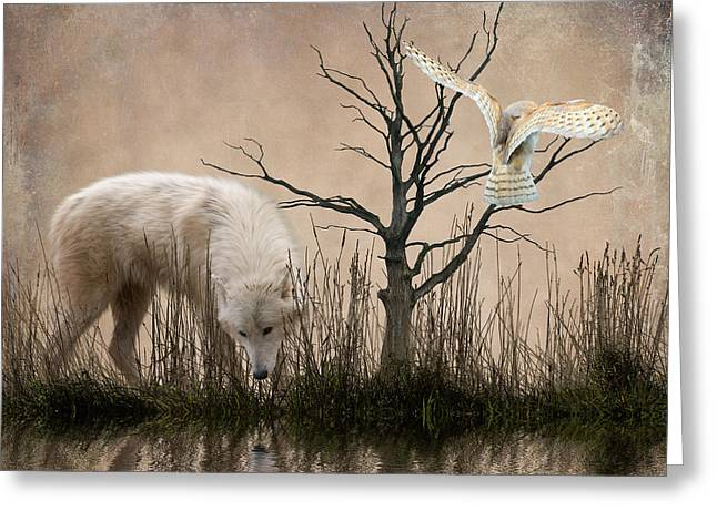 Dog In Lake Greeting Cards - Woodland Wolf reflected Greeting Card by Sharon Lisa Clarke