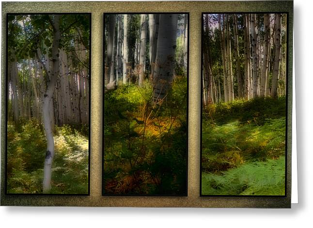Herbage Greeting Cards - Woodlands - Triptych Greeting Card by Ellen Heaverlo