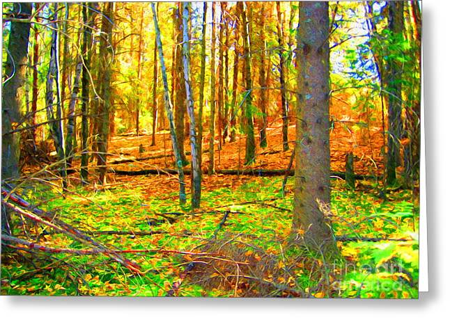 Fallen Leaf Mixed Media Greeting Cards - Woods Greeting Card by John Kreiter