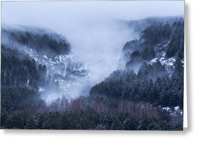 Engulfing Greeting Cards - Woods of the Mountain King Greeting Card by Gorazd Milosevski