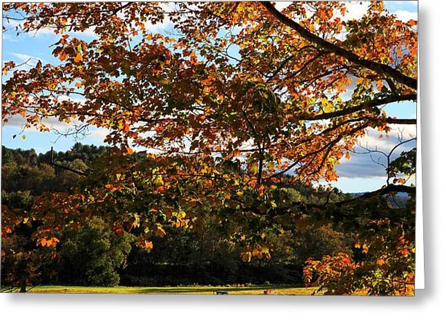 Woodstock Vermont Greeting Card by Edward Fielding