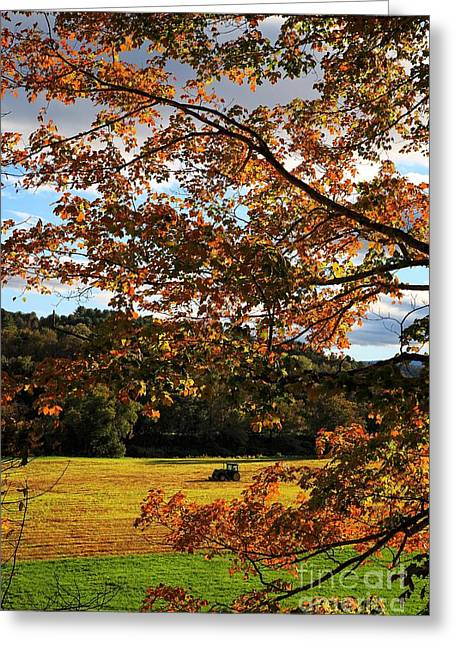 Hay Field Greeting Cards - Woodstock Vermont Greeting Card by Edward Fielding