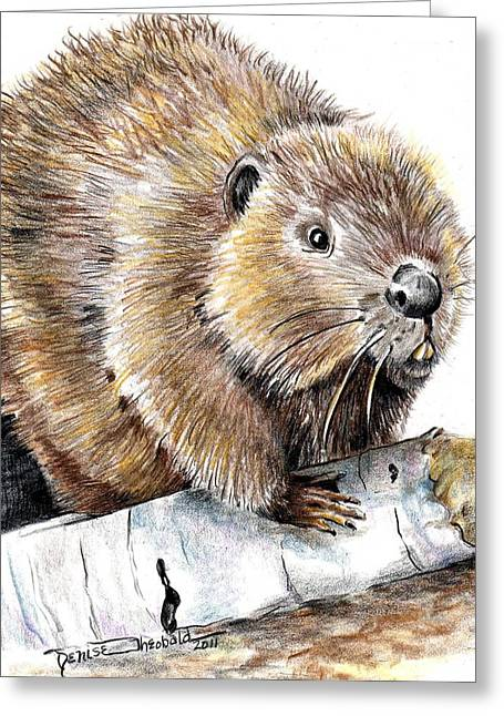 Beaver Drawings Greeting Cards - Woody Treat Greeting Card by Denise Theobald