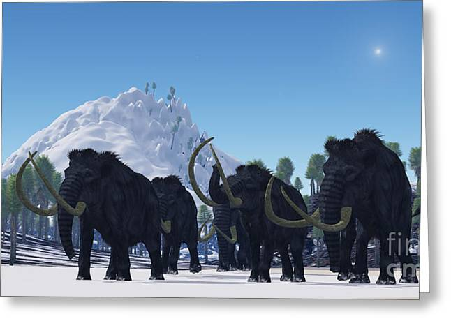 Woolly Greeting Cards - Woolly Mammoth Greeting Card by Corey Ford