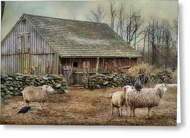 Stonewall Greeting Cards - Wooly Bully Greeting Card by Robin-lee Vieira