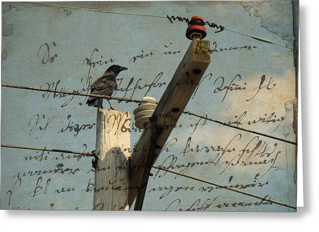 Crow Collage Greeting Cards - Words Through The Wires Greeting Card by Gothicolors Donna Snyder