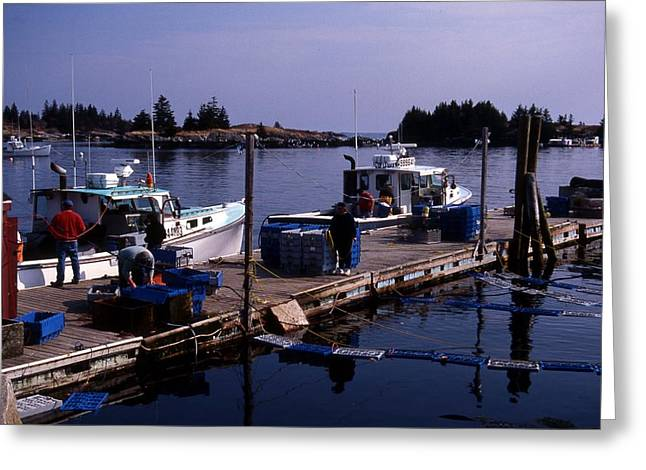 Maine Islands Greeting Cards - Working Docks At Vinalhaven Greeting Card by Skip Willits
