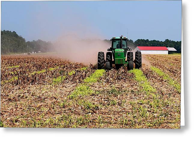 Gleaning Greeting Cards - Working The Corn Field Greeting Card by David Byron Keener