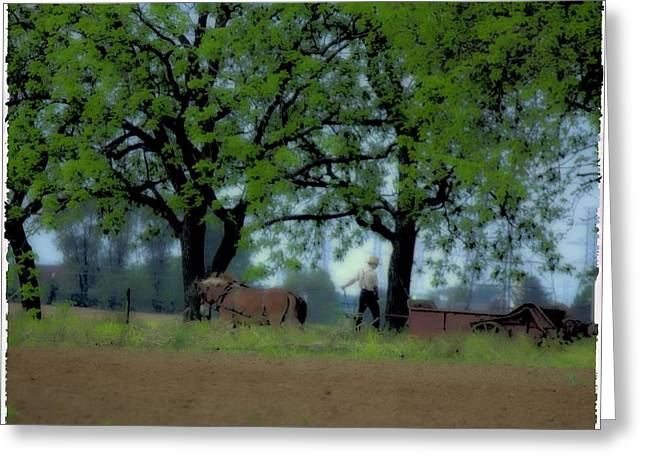 Lancaster Fine Arts Greeting Cards - Working The Fence Line Greeting Card by John Feiser