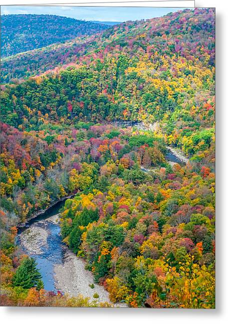 Worlds End Greeting Cards - Worlds End State Park Lookout 3 Greeting Card by Steve Harrington
