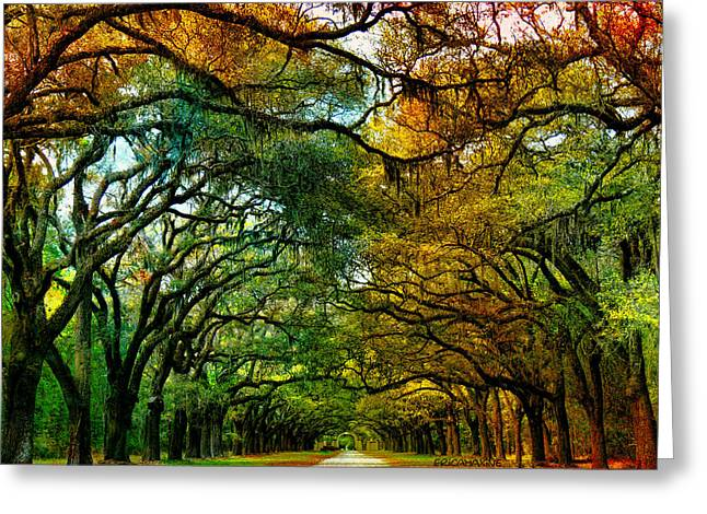 Chatham Greeting Cards - Wormsloe Plantation Greeting Card by EricaMaxine  Price