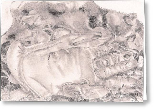 Leather Glove Drawings Greeting Cards - Worn Greeting Card by Elizabeth Lane