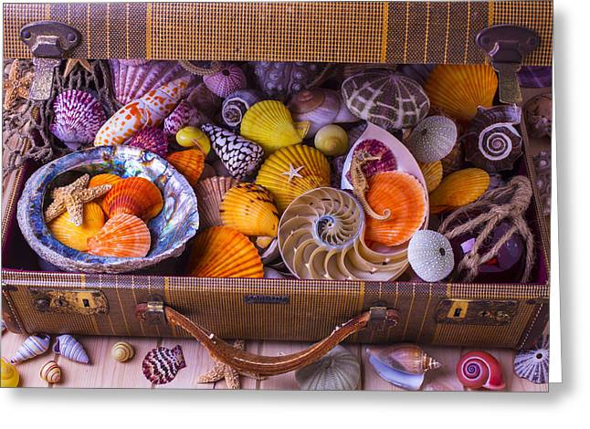 Old Objects Greeting Cards - Worn Suitcase Full Of Sea Shells Greeting Card by Garry Gay