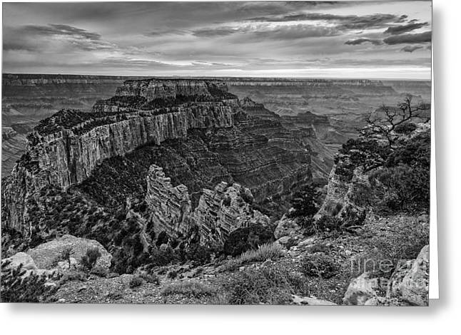 San Francisco Peaks Greeting Cards - Wotans Throne North Rim Grand Canyon National Park - Arizona Greeting Card by Silvio Ligutti