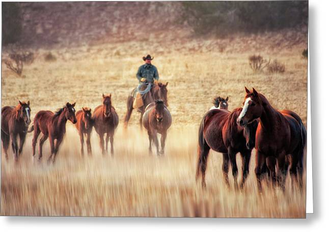 Wrangler And Horses On Ranch In New Greeting Card by Sheila Haddad